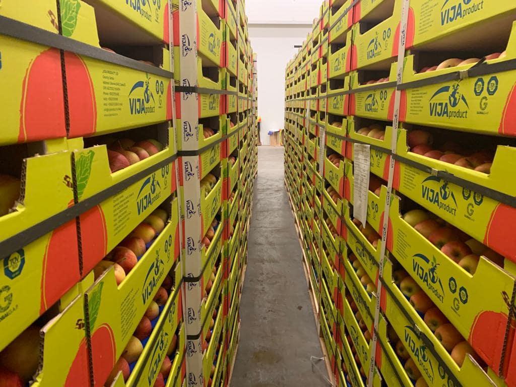 fruits vegetables warehouse